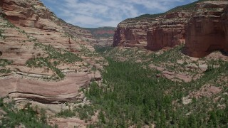AX136_160 - 6K stock footage aerial video of a low flight over trees and desert vegetation in Arch Canyon, Utah