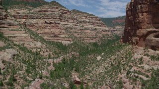 AX136_162 - 6K stock footage aerial video of a view of trees and desert plants at the bottom of Arch Canyon, Utah