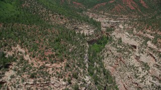 AX136_166 - 6K stock footage aerial video of flying above trees and vegetation, pan across the top of Arch Canyon, Utah