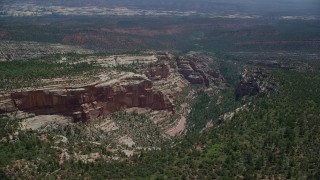AX136_174 - 6K stock footage aerial video of flying by box canyon with trees, Manti-La Sal National Forest, Utah