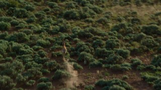 AX138_231 - 6K stock footage aerial video of tracking a lone pronghorn running through the desert near Moab, Utah