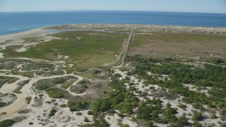 AX143_254 - 6K stock footage aerial video flying by marshland, scattered trees, Cape Cod, Provincetown, Massachusetts