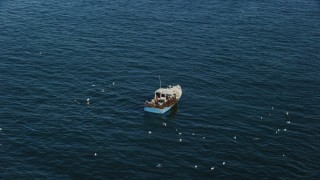 AX147_114 - 6k stock footage aerial video orbiting a fishing boat with birds, Rockport, Massachusetts