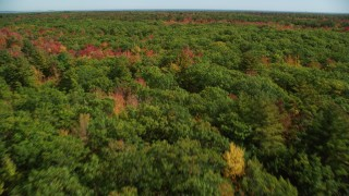 AX147_282 - 6k stock footage aerial video flying over a colorful forest, autumn, panning right, Biddeford, Maine
