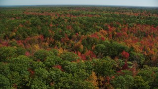 AX147_283 - 6k stock footage aerial video flying over colorful forest, autumn, Biddeford, Maine