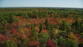 AX147_287 - 6k stock footage aerial video flying over a colorful forest in autumn, Biddeford, Maine