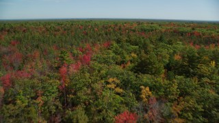 AX147_288 - 6k stock footage aerial video flying over a colorful forest in autumn, panning left, Biddeford, Maine