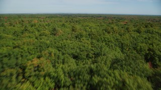 AX147_289 - 6k stock footage aerial video flying over colorful forest, approaching rural homes, autumn, Biddeford, Maine