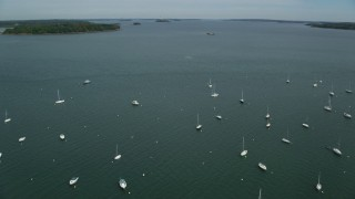 AX147_343 - 6k stock footage aerial video approaching and fly over boats moored in the bay, Portland, Maine