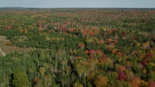 AX148_036 - 6k stock footage aerial video flying over a colorful forest in autumn, Cushing, Maine