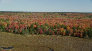 AX148_041 - 6k stock footage aerial video approaching a colorful forest landscape, autumn, Cushing, Maine