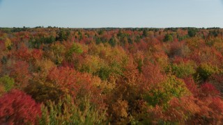 AX148_042 - 6k stock footage aerial video flying over a colorful landscape autumn, Cushing, Maine