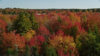 AX148_043 - 6k stock footage aerial video flying over a colorful forest landscape, panning right, autumn, Cushing, Maine