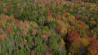 AX148_046 - 6k stock footage aerial video flying over a colorful forest landscape, autumn, Cushing, Maine