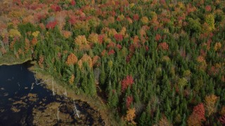 AX148_048 - 6k stock footage aerial video of a bird's eye view flying over colorful forest, autumn, Cushing, Maine