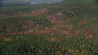 AX148_157 - 6k stock footage aerial video flying by colorful forest in autumn, Mount Desert Island, Tremont, Maine
