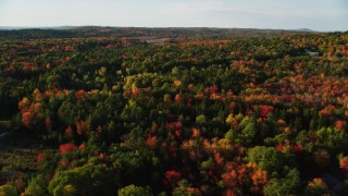 AX149_035 - 6K stock footage aerial video flying over forest with colorful fall foliage, Blue Hill, Maine