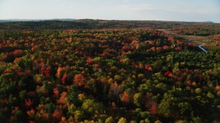 AX149_036 - 6K stock footage aerial video flying over  a forest filled with colorful fall foliage, Blue Hill, Maine