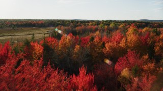 AX149_048 - 6K stock footage aerial video flying over a forest with colorful trees toward a clearing, autumn, Blue Hill, Maine