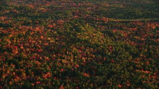 AX149_187 - 6K stock footage aerial video flying by forest of colorful trees in autumn, Searsmont, Maine, sunset