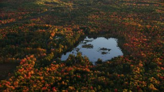 AX149_190 - 6K stock footage aerial video flying by a pond surrounded by colorful forest in autumn, Liberty, Maine, sunset