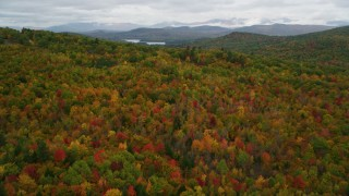 AX150_133 - 6K stock footage aerial video flying over dense, brightly colored forest, autumn, Lovell, Maine