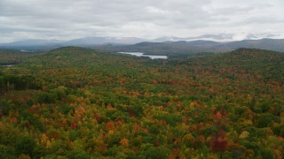 AX150_134 - 6K stock footage aerial video flying over dense forest in autumn, approach Cezar Lake, overcast, Lovell, Maine