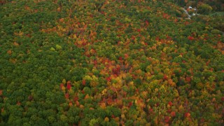 AX150_136 - 6K stock footage aerial video of a bird's eye view flying over dense, brightly colored forest, autumn, Lovell, Maine