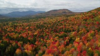 AX150_161 - 6K stock footage aerial video flying over dense forest, autumn, approaching White Mountains, New Hampshire