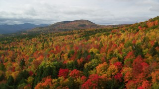 AX150_162 - 6K stock footage aerial video flying over dense, colorful forest, approach clouds, White Mountains, New Hampshire