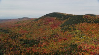 AX150_233 - 6K stock footage aerial video flying by colorful forest, Cleveland Mountain, autumn, Bethlehem, New Hampshire