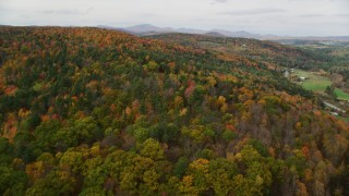 AX150_310 - 6K stock footage aerial video flying over dense forest of brightly colored trees, autumn, Wells River, Vermont