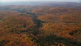 AX150_322 - 6K stock footage aerial video flying by a forest in autumn, overcast sky, Topsham, Vermont