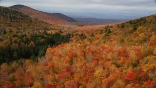 AX150_326 - 6K stock footage aerial video flying over dense forest of colorful trees, mountains, autumn, Orange, Vermont