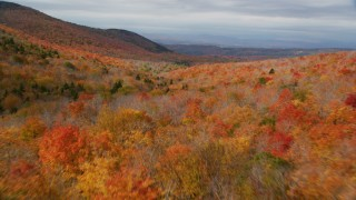 AX150_327 - 6K stock footage aerial video flying over forest of dense, colorful trees, mountains, autumn, Orange, Vermont