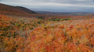 AX150_328 - 6K stock footage aerial video flying over dense forest, mountains, autumn, overcast, Orange, Vermont
