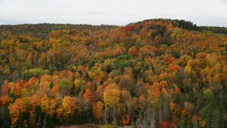 AX150_337 - 6K stock footage aerial video flying over Thurman W Dix Reservoir, approach forest, autumn, Orange, Vermont