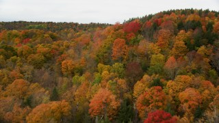 AX150_338 - 6K stock footage aerial video flying over forest, reveal small barns, overcast sky, autumn, Barre, Vermont