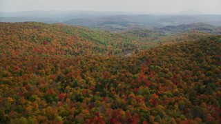 AX150_463 - 6K stock footage aerial video flying over brightly colored, densely forested hills, autumn, North Pomfret, Vermont