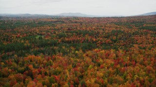 AX151_093 - 6K stock footage aerial video flying over forest of colorful trees, rural homes, autumn, Newbury, New Hampshire