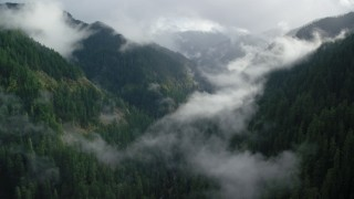 AX154_046 - 6K stock footage aerial video following Eagle Creek Trail over misty clouds in the Cascade Range, Hood River County, Oregon