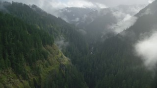 AX154_048 - 6K stock footage aerial video flying through a misty canyon following Eagle Creek Trail, Cascade Range, Hood River County, Oregon