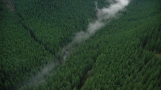 AX154_053 - 6K stock footage aerial video of bird's eye view of mist over a creek, and evergreen forest in the Cascade Range, Hood River County, Oregon