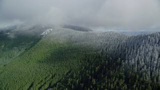AX154_059 - 6K stock footage aerial video of the snow line on evergreen trees atop a mountain ridge, Cascade Range, Hood River County, Oregon