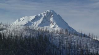 AX154_124 - 6K stock footage aerial video of snowy peak summit behind ridge with dead evergreens, Mount Hood, Cascade Range, Oregon