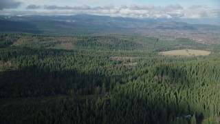 AX154_135 - 6K stock footage aerial video flying over evergreens to approach logging and farm areas near Parkdale, Oregon