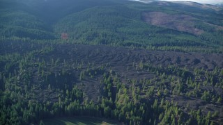 AX154_139 - 6K stock footage aerial video flying lava flow and evergreen forest in Parkdale, Oregon