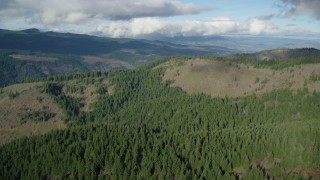 AX154_146 - 6K stock footage aerial video approaching and flying over evergreen forest and logging areas, Dee, Oregon