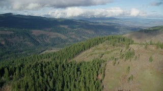 AX154_147 - 6K stock footage aerial video flying over and approaching evergreen forest clear cut areas, Dee, Oregon