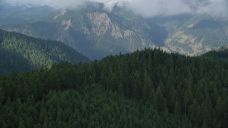 AX154_152 - 6K stock footage aerial video flying over forest to reveal the Columbia River Gorge, Hood River, Columbia River Gorge, Oregon